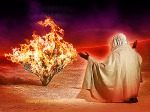 moses-and-the-burning-bush-the-bible-27076046-400-300